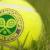 Being a Line Judge At Wimbledon