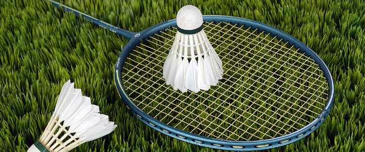 Badminton racket and shuttle