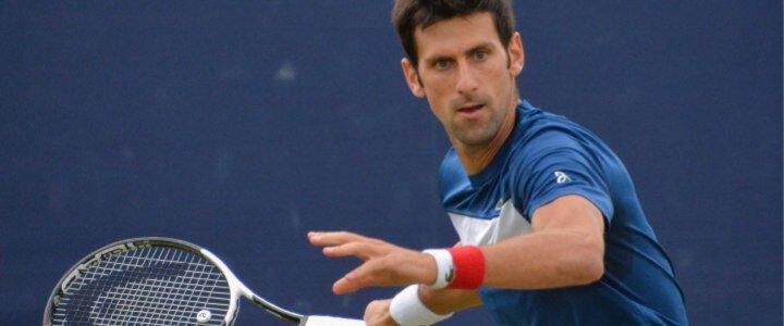 Novak Djokovic's Tennis Racket