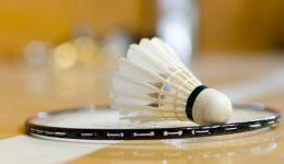 Top 5 Best Budget Badminton Rackets